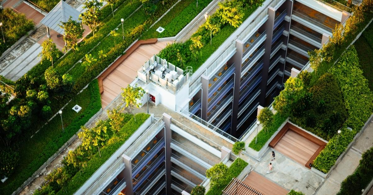 Various green roof solutions, from roofing to hanging gardens