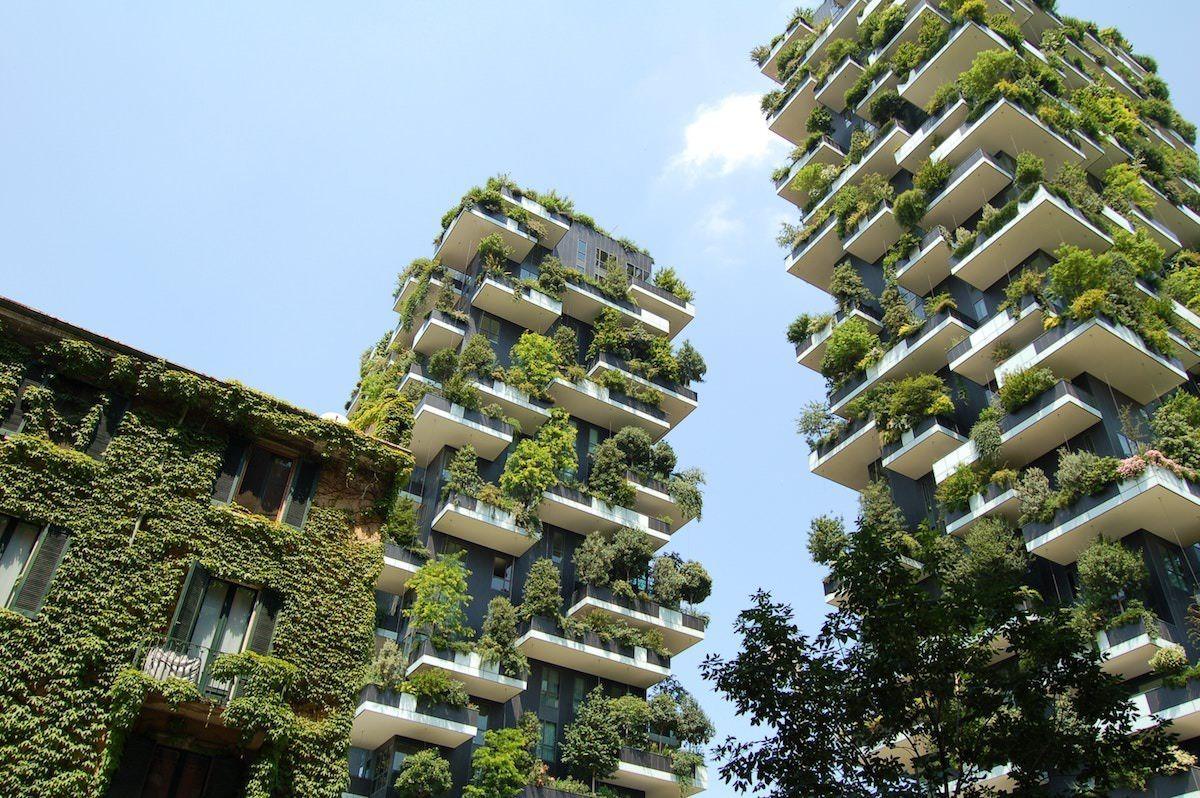 Jardines verticales en las fachadas